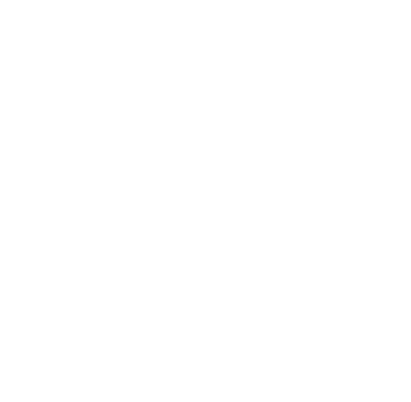 stanley brothers logo